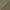 ARENA OSCURO/CAMEL - 21985