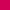 Fuchsia - FUCHSIA