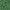 Green Melange - 833_05_511